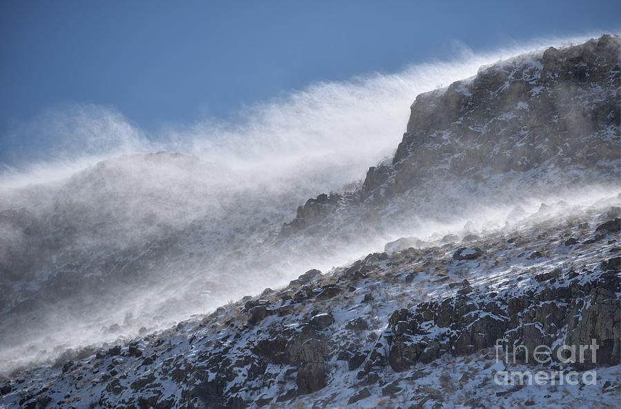 Wild Winter Winds Photograph