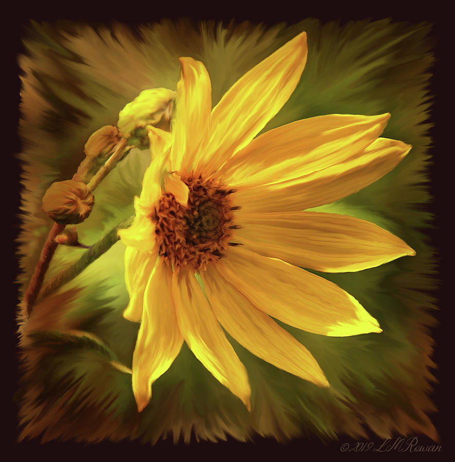 Yellow Digital Art - Wild Yellow Field Flower by Images Undefined