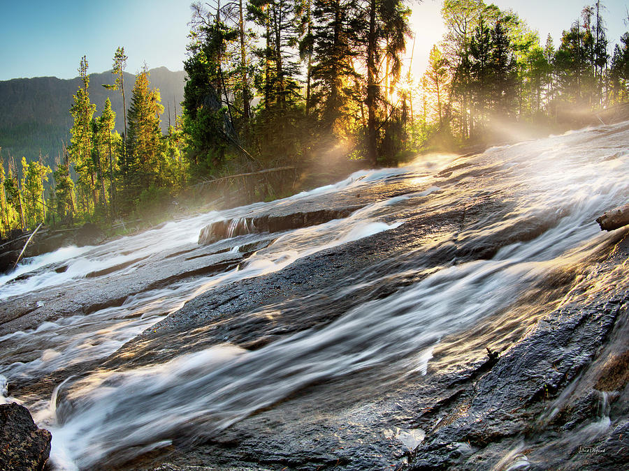 Beautiful Photograph - Wilderness River by Leland D Howard