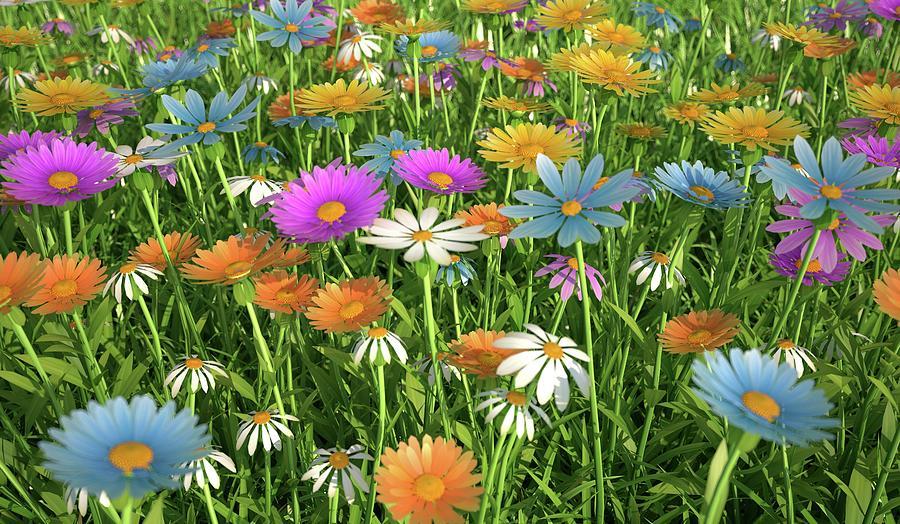 Wildflower Meadow, Artwork Digital Art by Leonello Calvetti