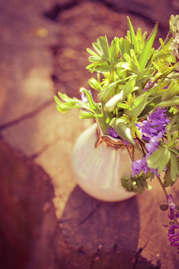Wildflowers Bouquet Photograph by Jeja