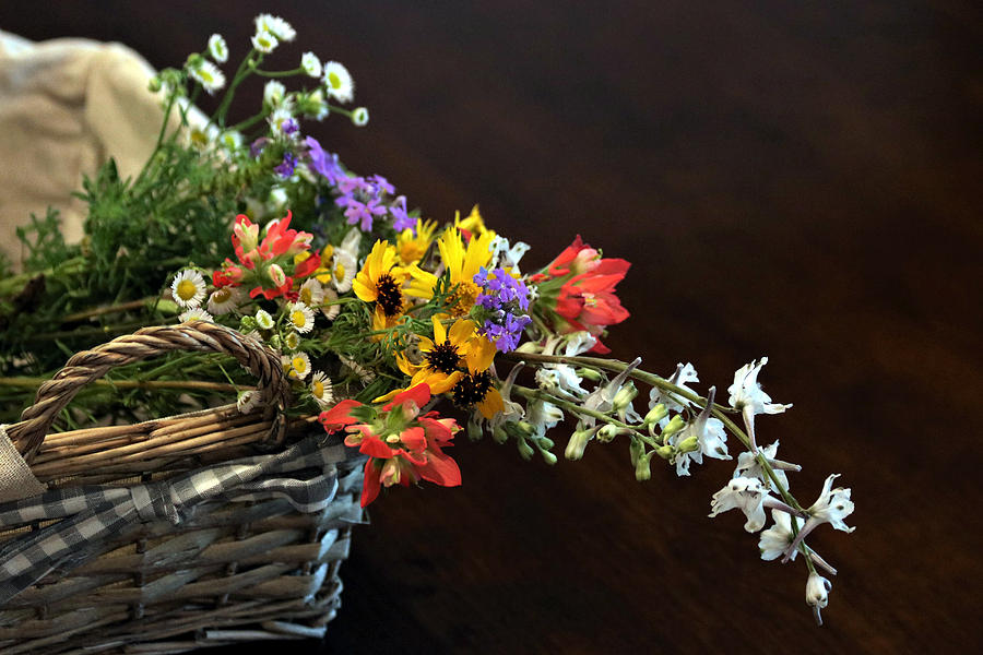 Wildflowers in a Basket on Black by Sheila Brown