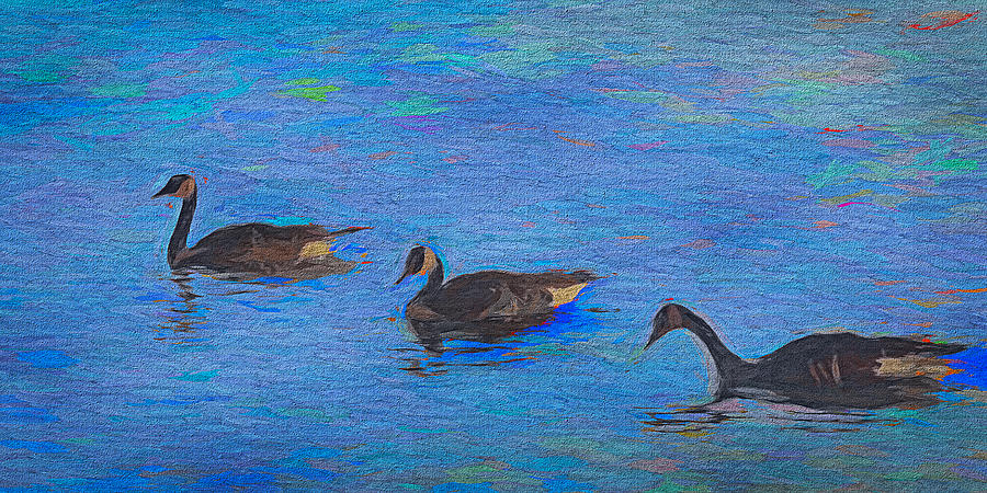 Wildlife 27 Three Geese by Cliff Guy