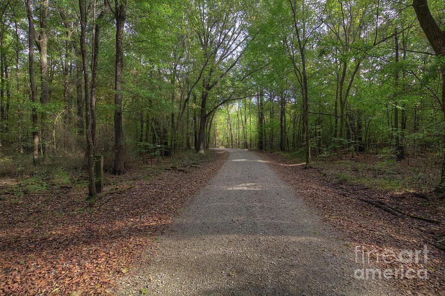 Horizontal Photograph - Wilhelmina Conservation Area  by Larry Braun