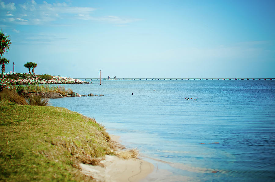 Tranquility Photograph - William Bantram Park by Sharondipity Photography