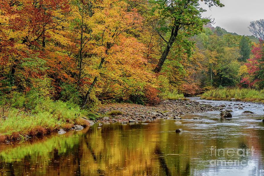Williams River and Autumn Rain by Thomas R Fletcher