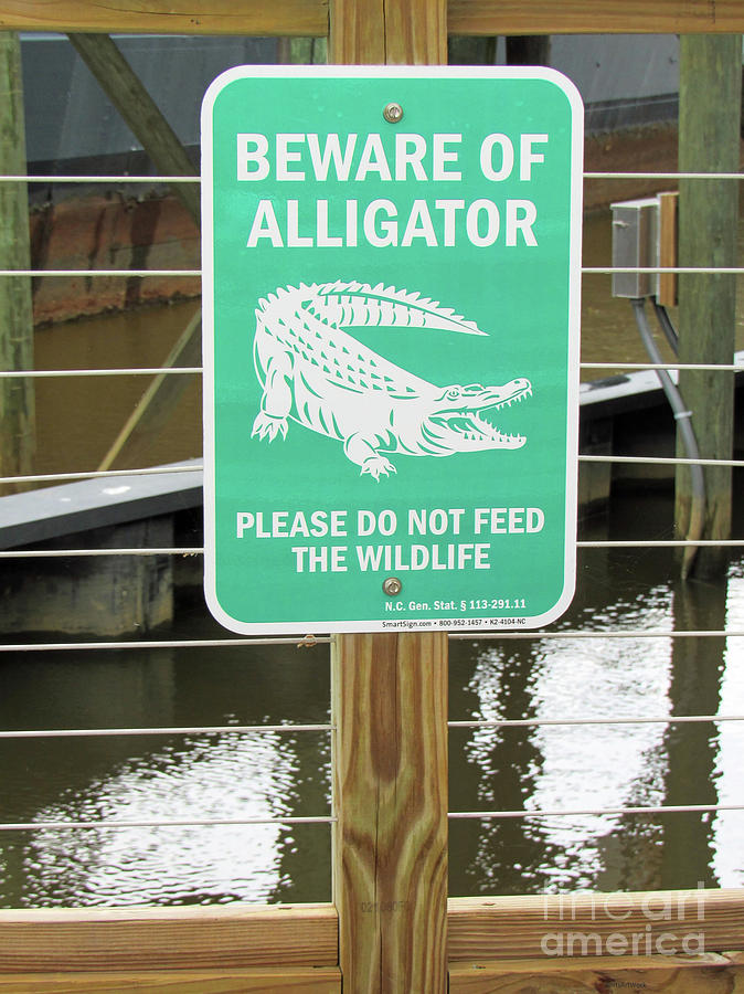 Wilmington North Carolina Alligator Warning Sign by Roberta Byram