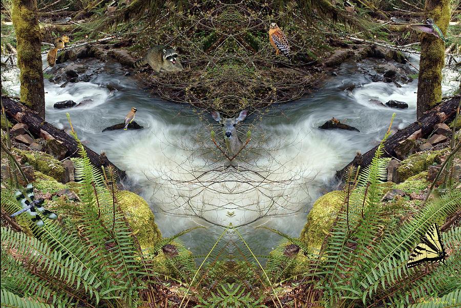 Wilson Creek Mirror Art 2019 #1 with Critters by Ben Upham III