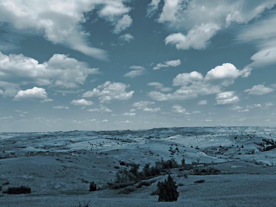 Wind Drift by Cris Fulton