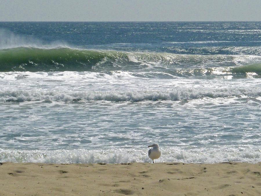 Sea by Ellen Paull