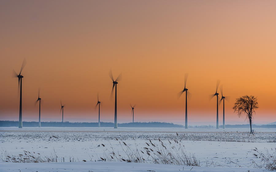 Wind Photograph - Wind Turbines An A Lonely Tree by Patrick Dessureault