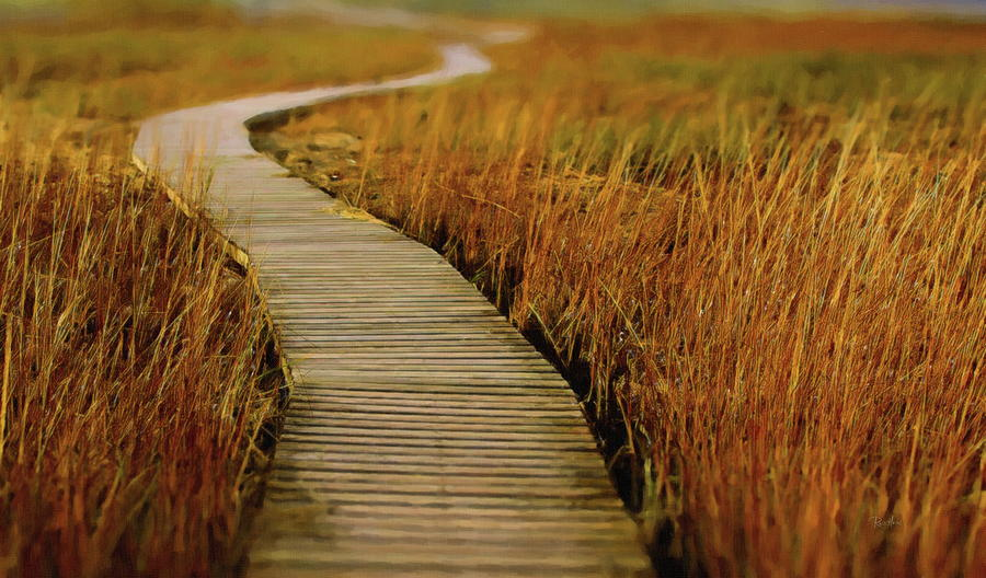 Winding Boardwalk Marsh by Russ Harris