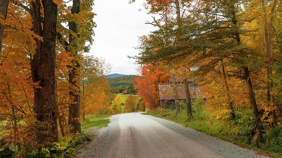 Winding Road by John Rivera