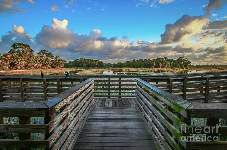 Winding Waters Observation Deck by Tom Claud