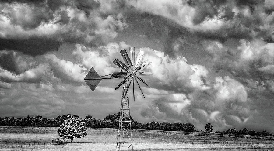 Windmill From the Window by Marcy Wielfaert