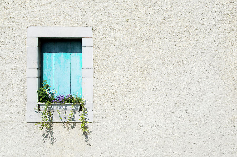 Window And Window-box Of Flowers In Photograph by Michael Betts