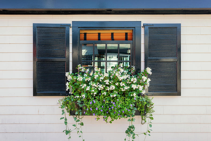 Window Photograph - Window Full Of Flowers by Lorrie Joaus