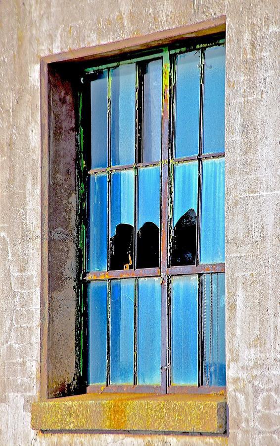 Windows Photograph - Window by Gillis Cone