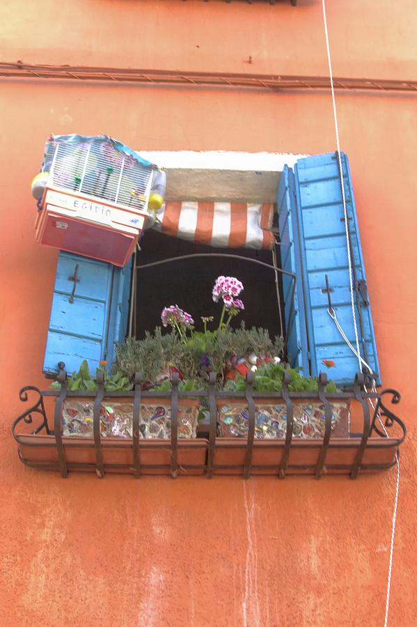 Window in Burano Italy by David Smith