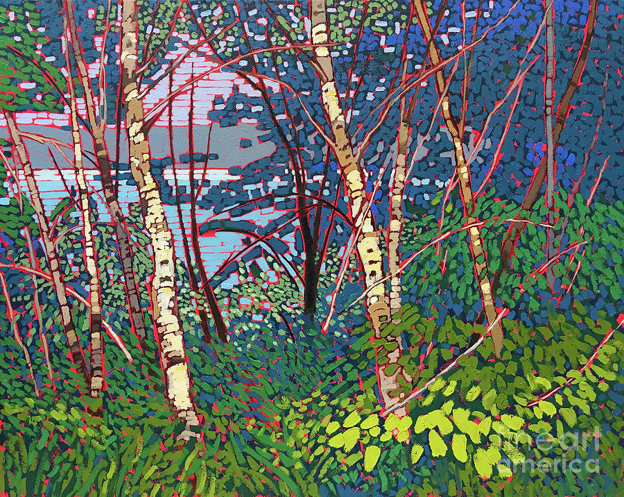 Window Through the Woods by Shelley Newman