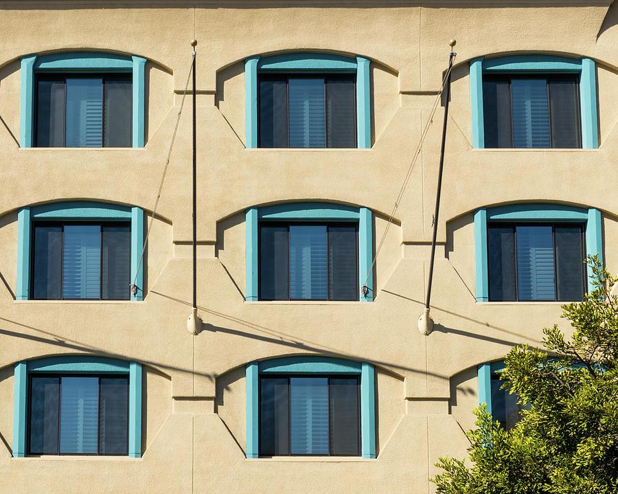 Windows with Tree by Wade Brooks