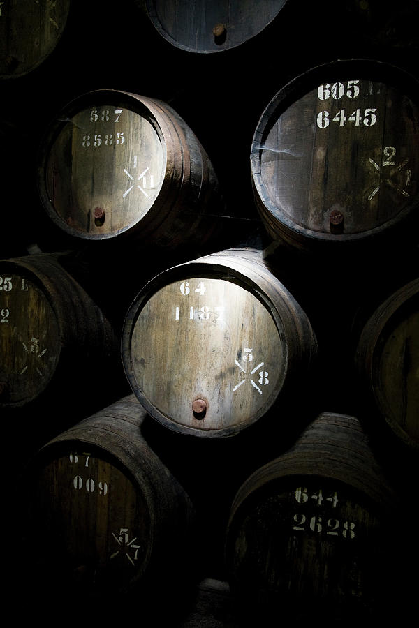 Wine Barrels In A Cellar Photograph by Tobias Titz