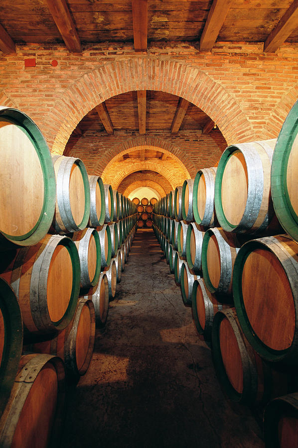 Wine Barrels In Cellar, Spain Photograph by Johner Images