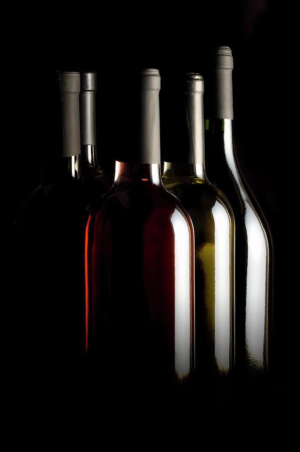 Wine Bottles Photograph by Carlosalvarez