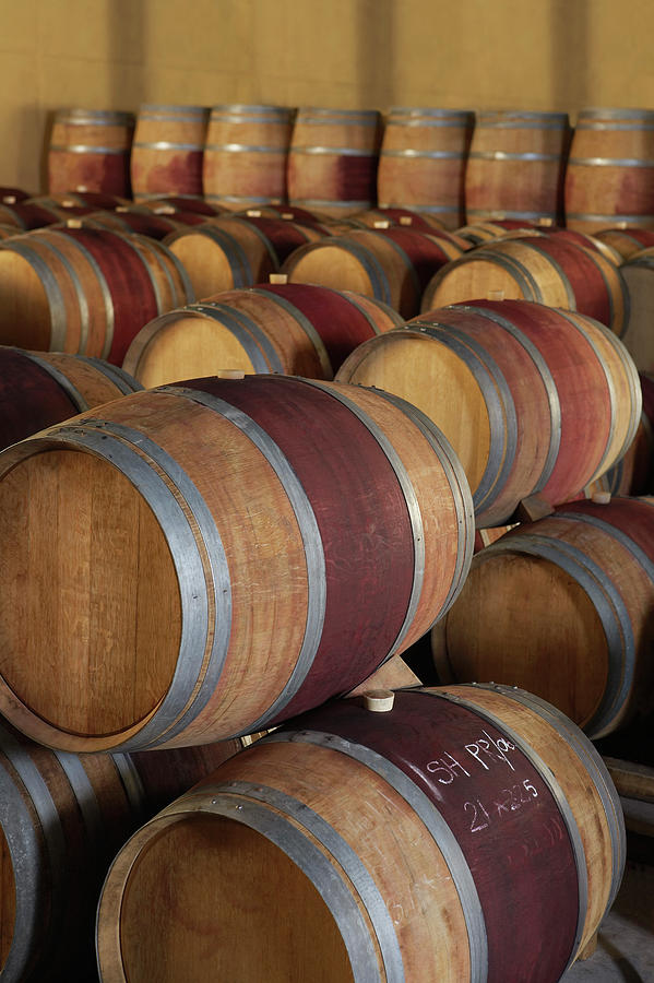 Wine Casks Photograph by Moodboard