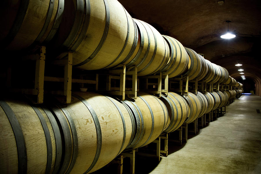 Wine Cave With Oak Barrels In Napa Photograph by Seanfboggs