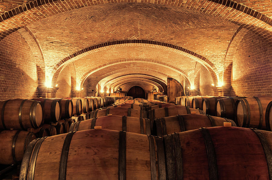 Wine Cellar Photograph by Alexd75