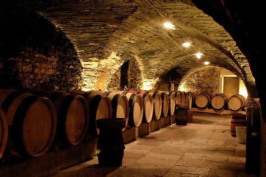 Wine Cellar Photograph by Brasil2