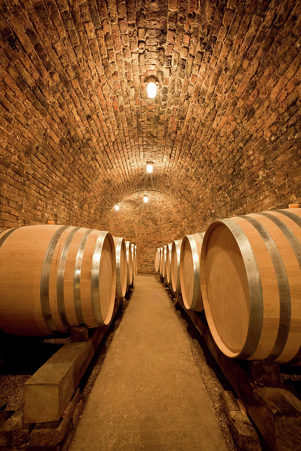 Wine Cellar With Large Barrels Photograph by Benedek