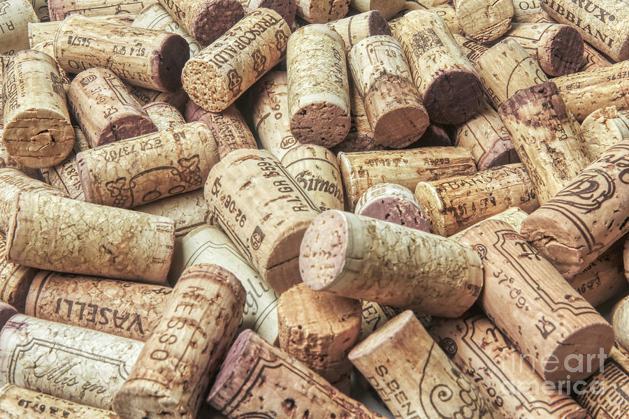 Wine Photograph - Wine Corks Pattern by Stefano Senise