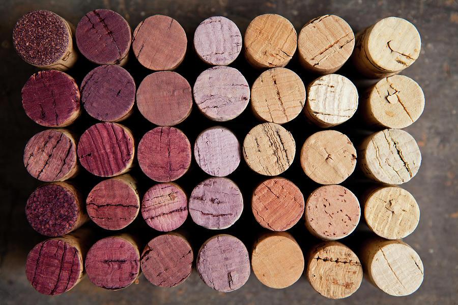 Wine Corks Photograph by Sematadesign