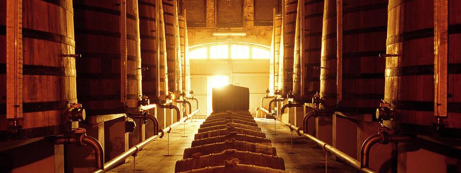 Winecellar Photograph by Kontrast-fotodesign