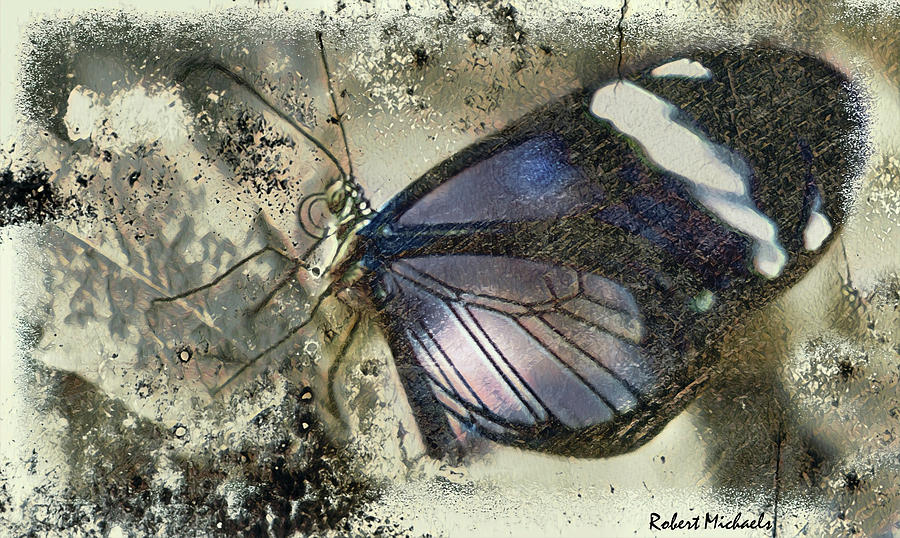 Wing Tips by Robert Michaels