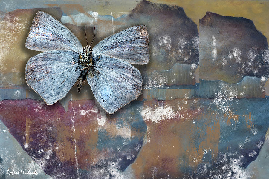 Wings Against A Wall by Robert Michaels