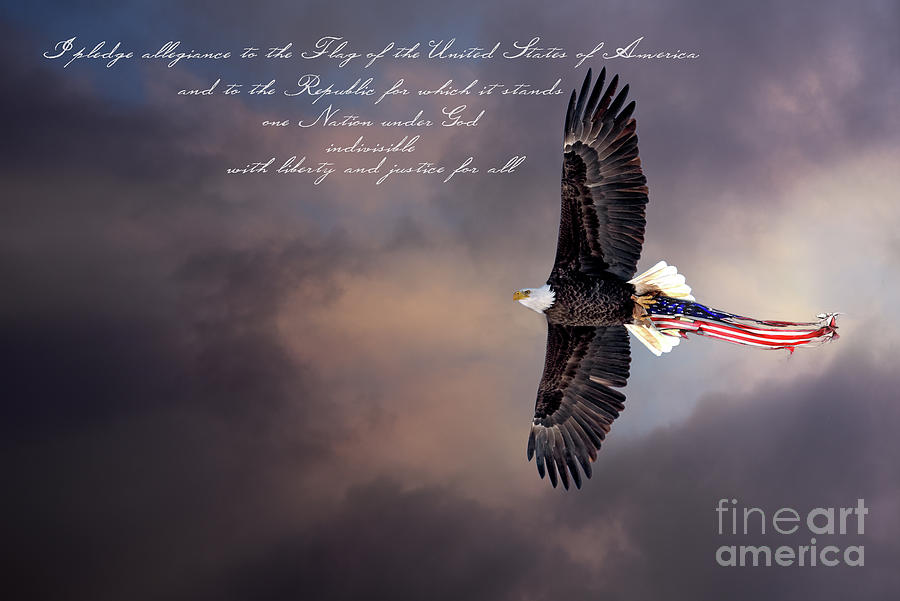 Wings Of Freedom - Pledge Photograph