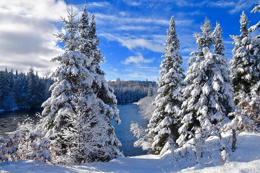 Winter Along The Ausable 1099 Photograph