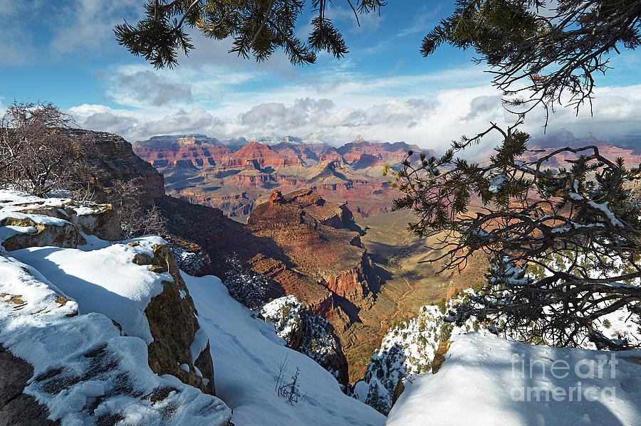 Winter at the South Rim by Steve Ondrus
