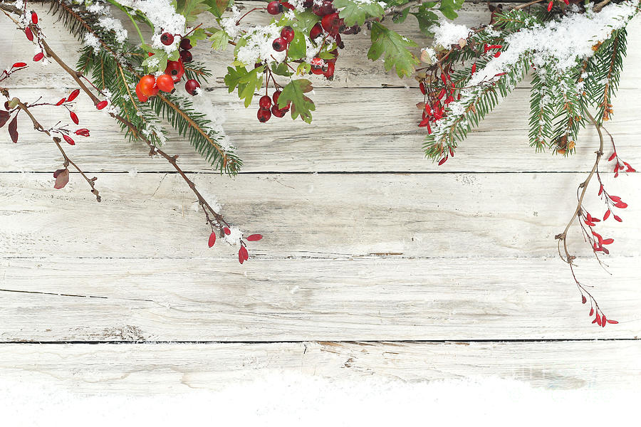 Symbol Photograph - Winter Background by Alina G