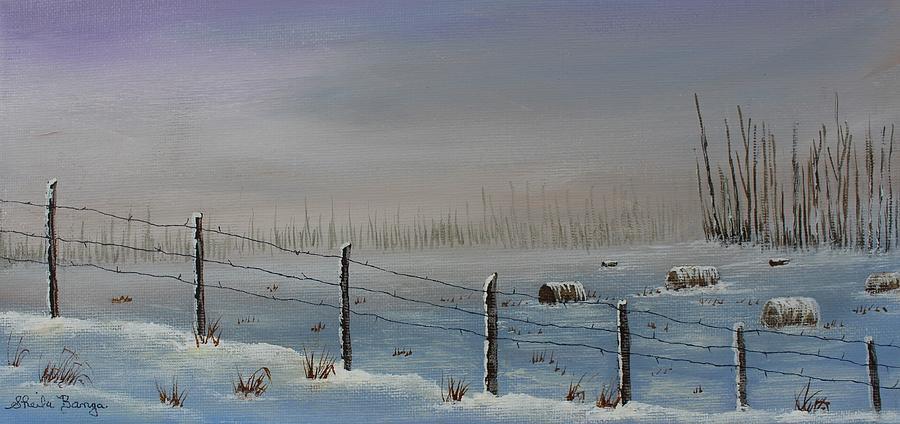 Winter Bales by Sheila Banga