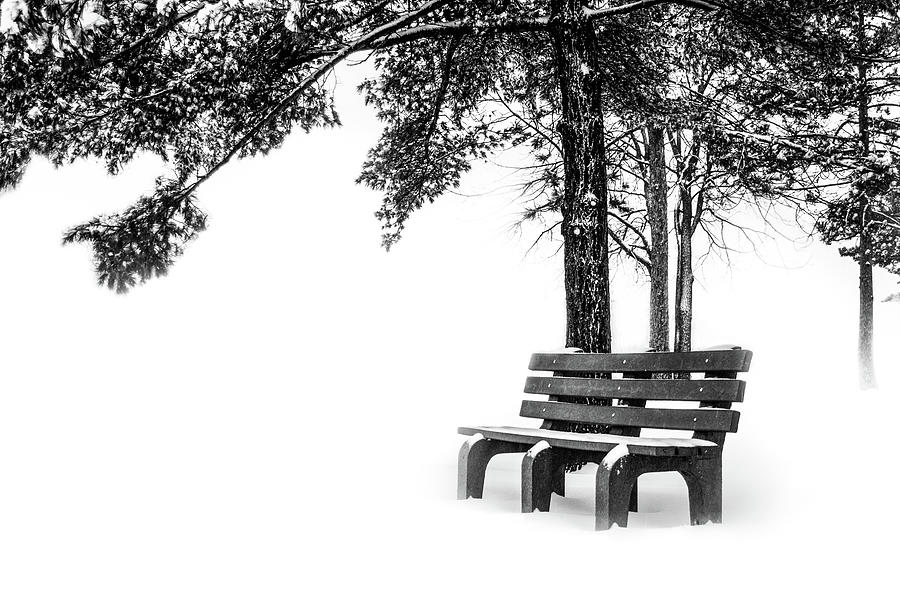Winter Bench  by Michael Arend