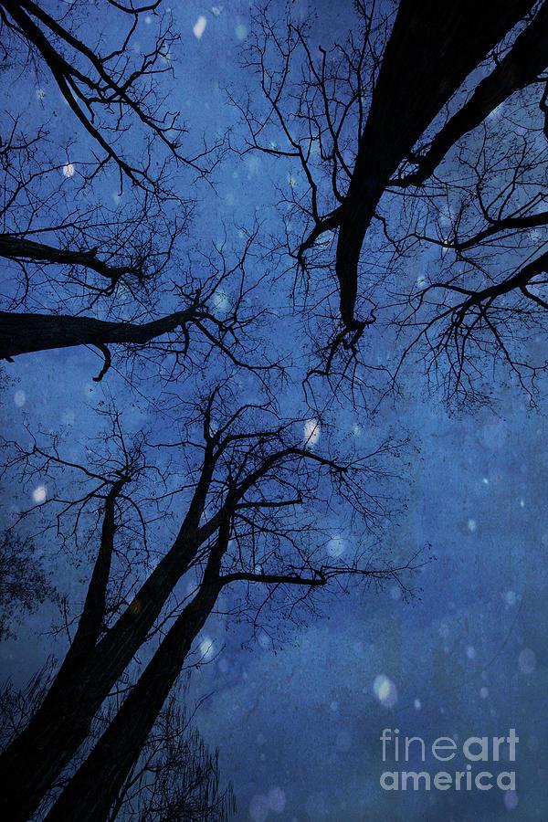 Winter Blues by Juli Scalzi
