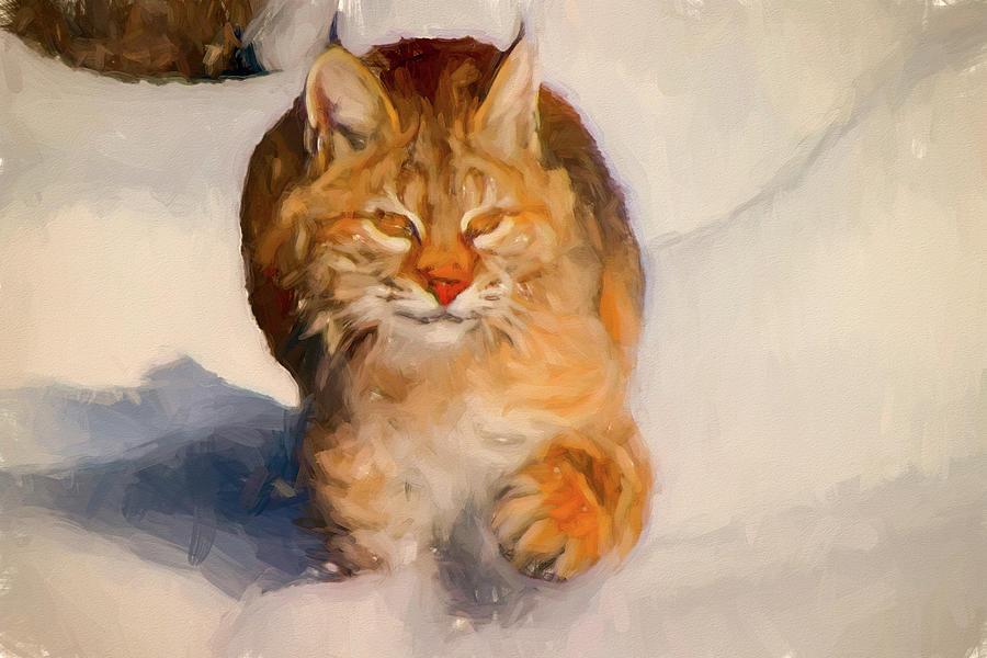 Winter Bobcat  by Bob Orsillo