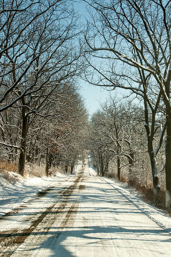 Road Photograph - Winter Canopy by Todd Klassy