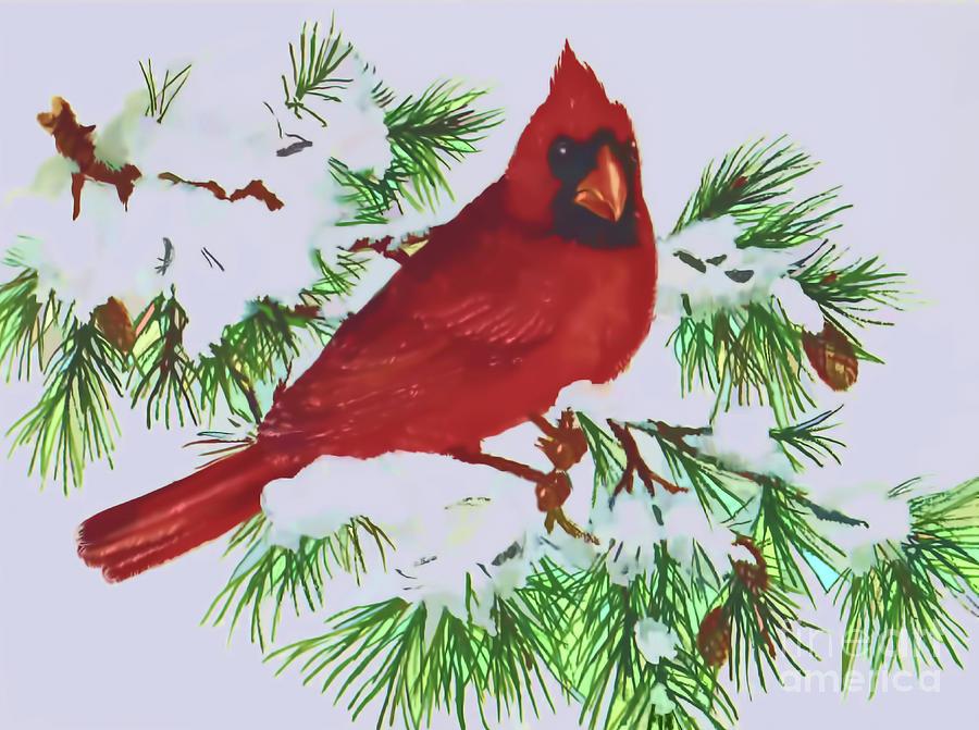 Winter Cardinal by D Hackett