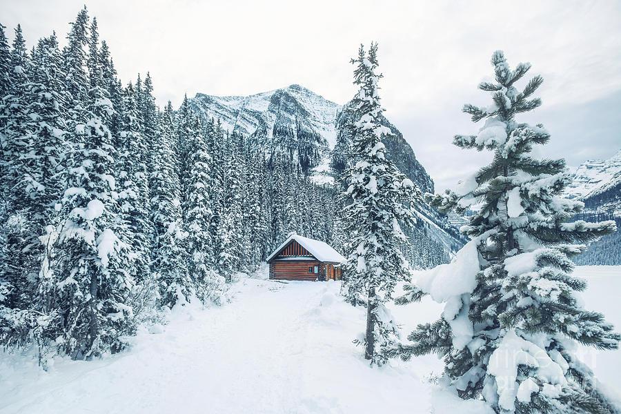 Kremsdorf Photograph - Winter Comes When You Dream Of Snow by Evelina Kremsdorf
