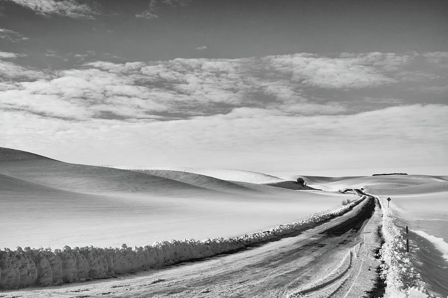 Winter Country Road Black and White by Tatiana Travelways